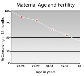 Maternal age and fertility