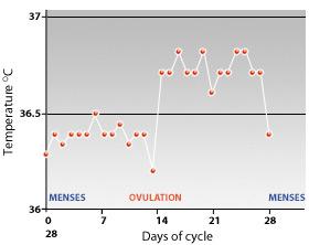 Normal basal body temperature (BBT) chart